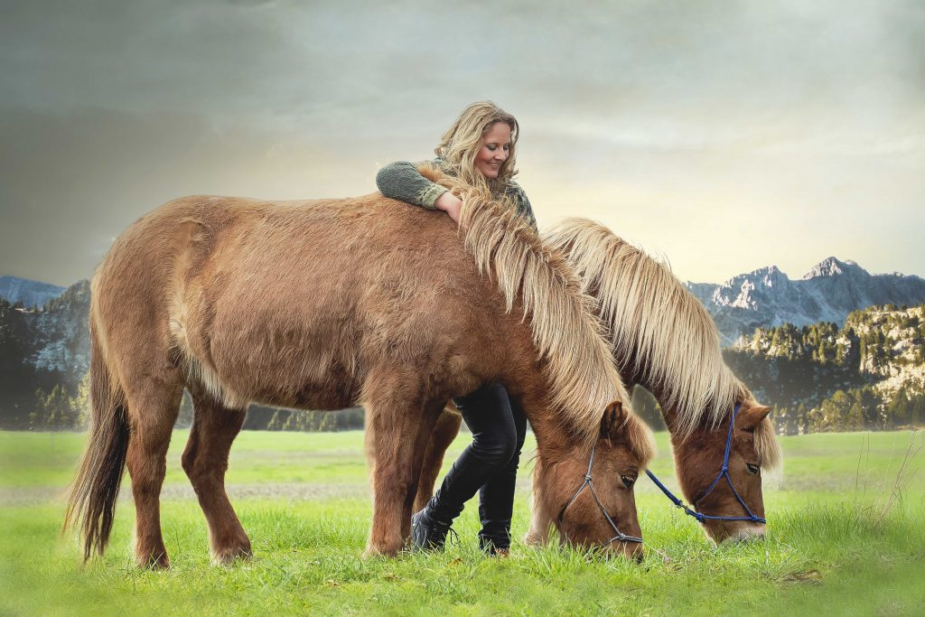 Dierenfotografie paarden
