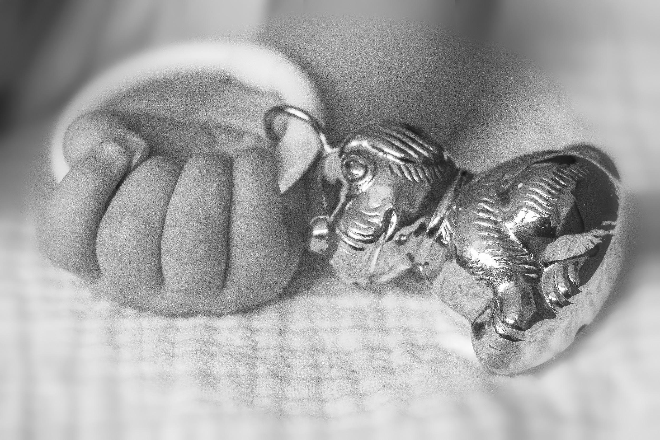 New born Tygo